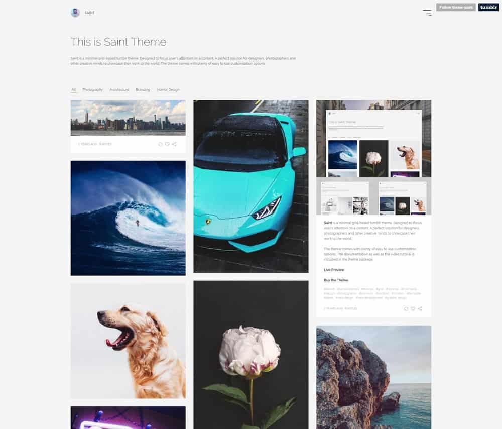saint-minimal-tumblr-theme