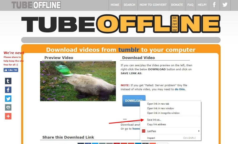 How To Save Tumblr Videos 3 Easy Options Theme Junkie