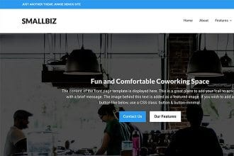 Introducing the Smallbiz WordPress Theme