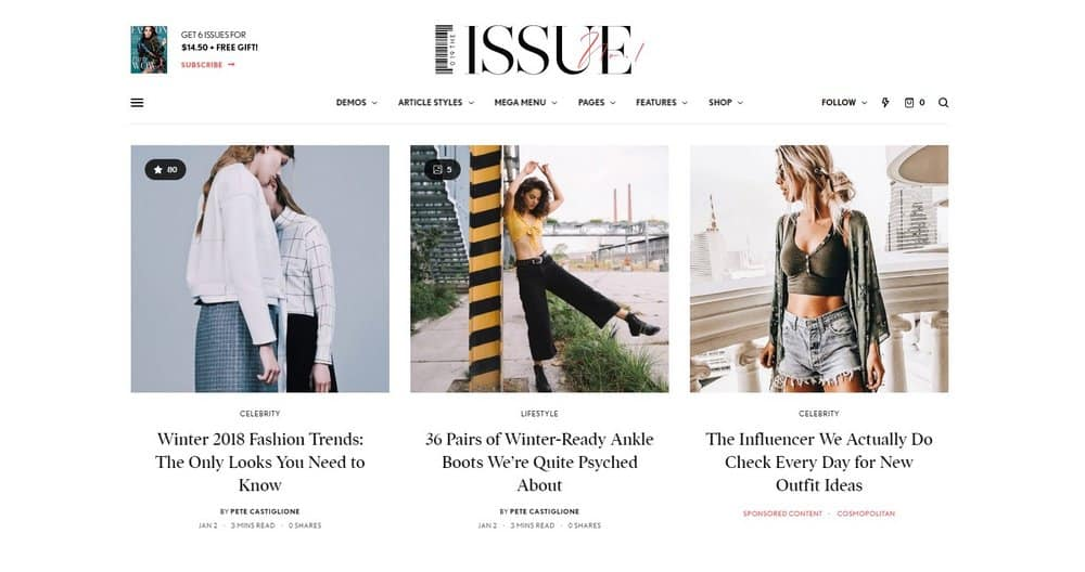 theissue-wordpress-theme