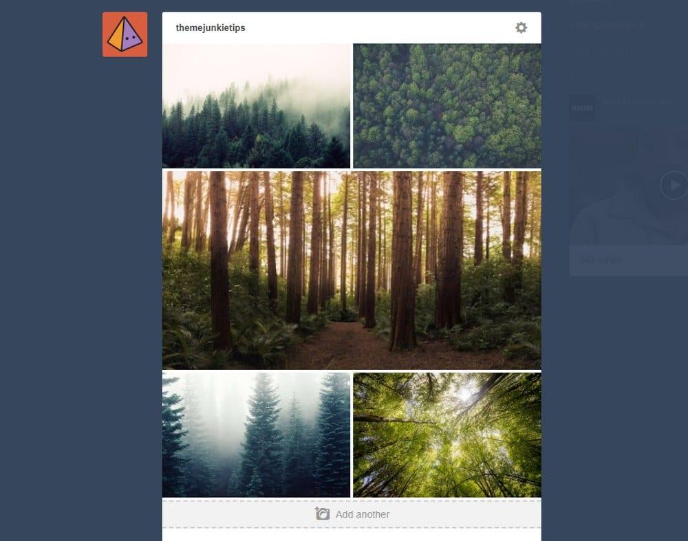 tumblr-moodboard-tutorial-3
