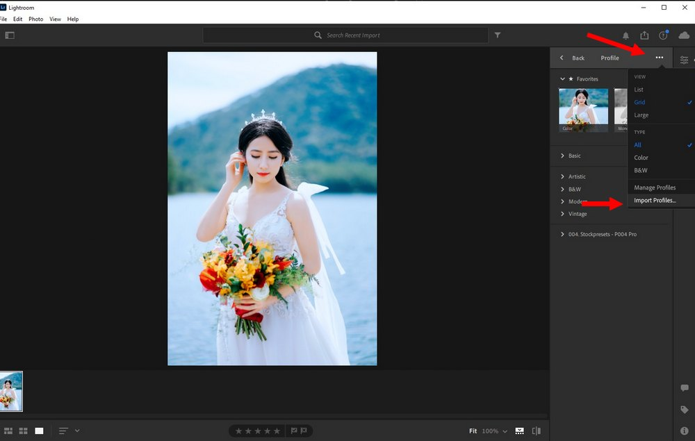 use LUTs in Lightroom CC 2