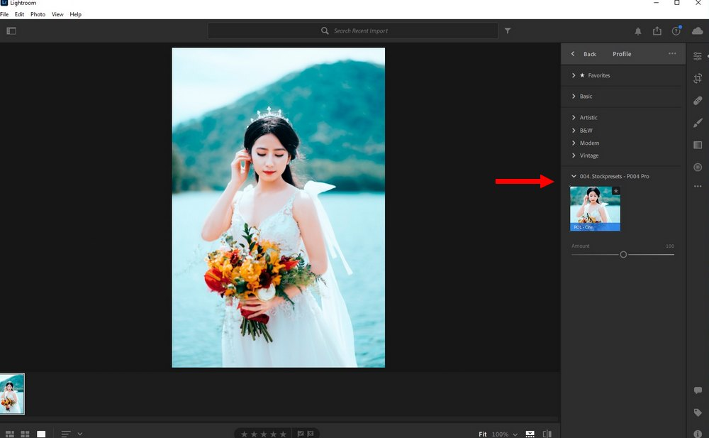 use LUTs in Lightroom CC 3