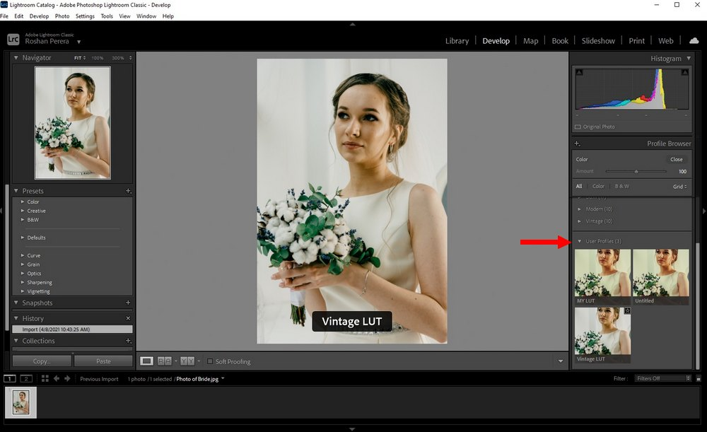 use LUTs in Lightroom Classic