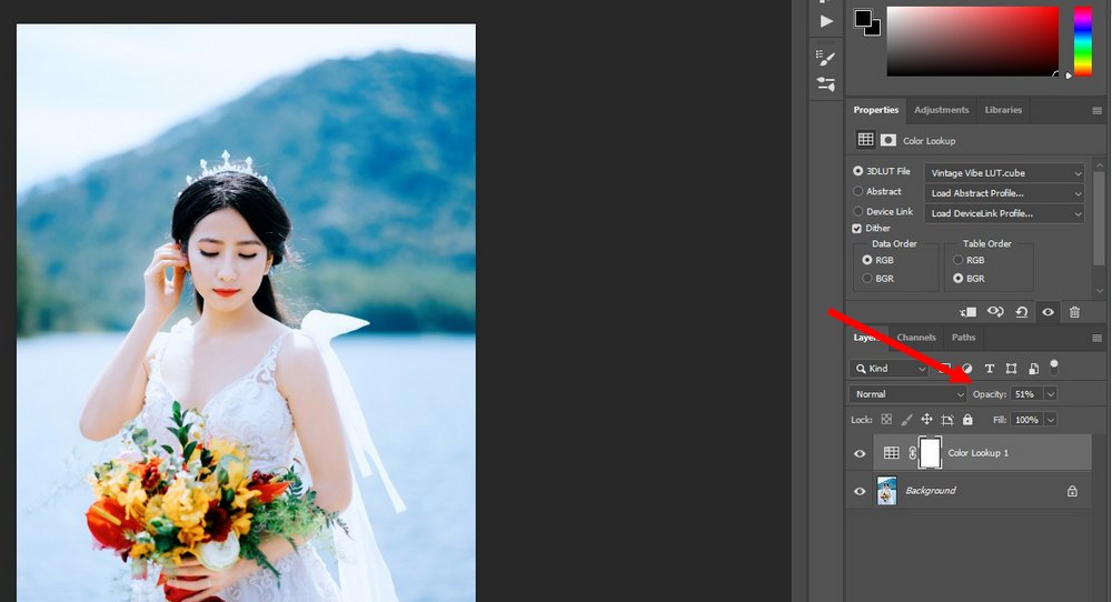 use luts in Photoshop 3
