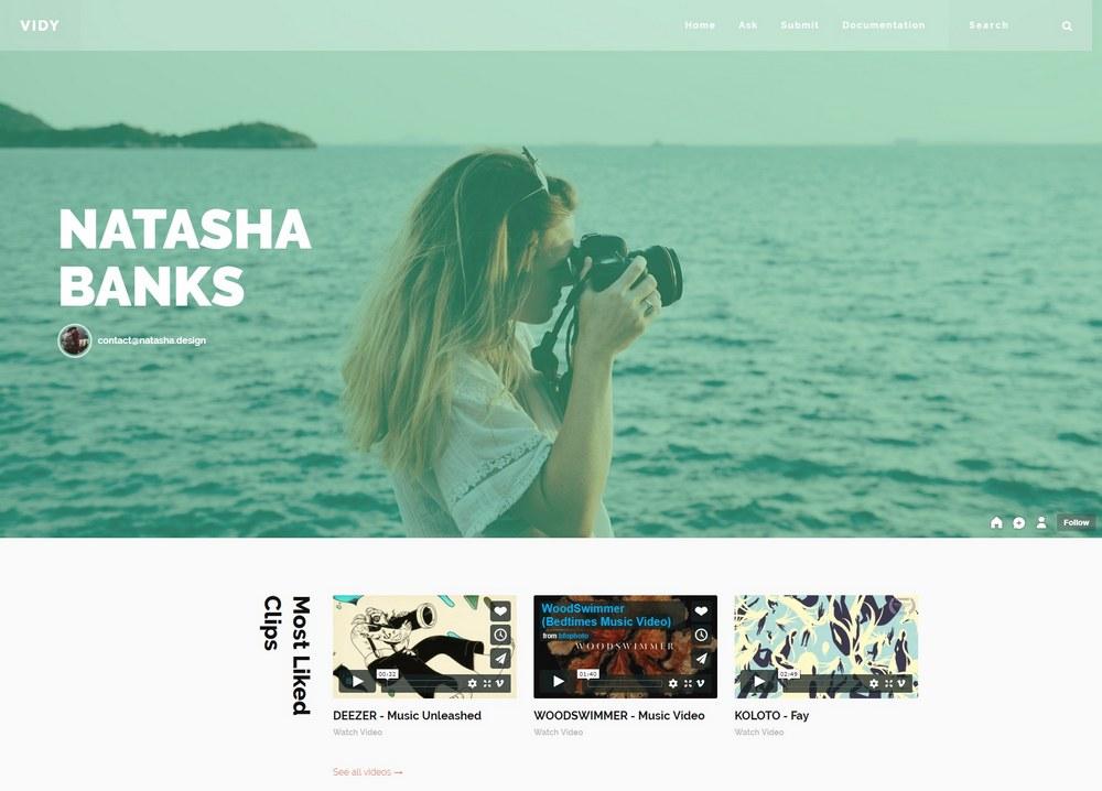 vidy-portfolio-tumblr-theme