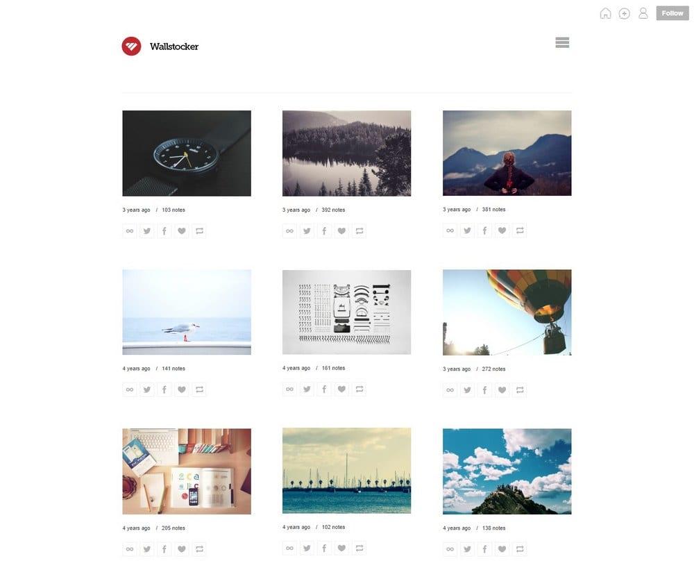 wallstocker-minimal-tumblr-theme