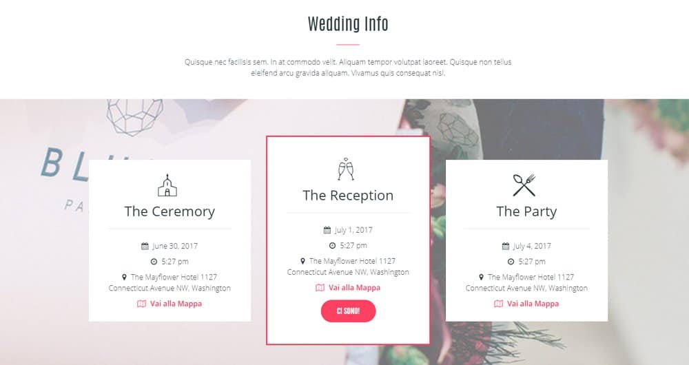 wedding-website-info