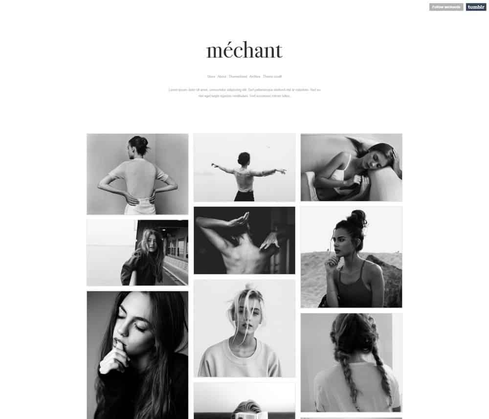 wicked-tumblr-porofolio-theme