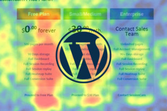How To Use WordPress Heatmap Plugins To Optimize Your Website